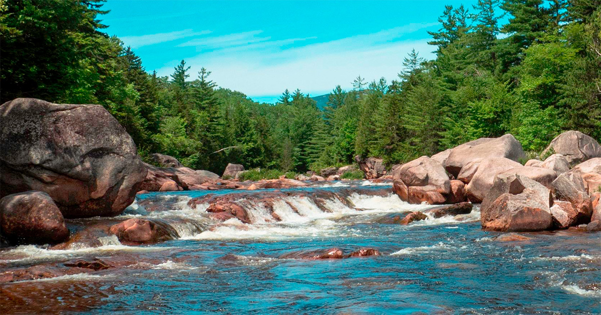 Visit the North Maine Woods